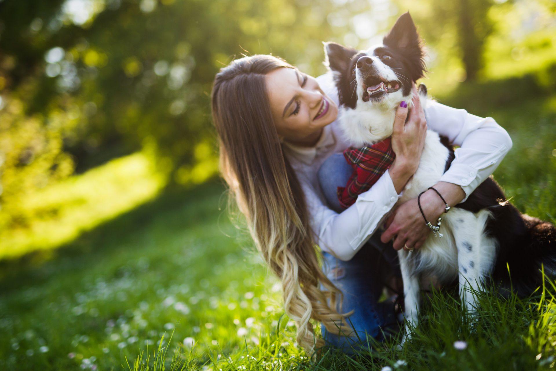 Parrainage chiens et chats